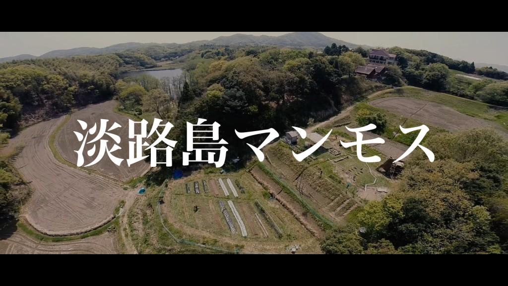 淡路島マンモスの全体像│空から撮影した動画でマンモスをご紹介!