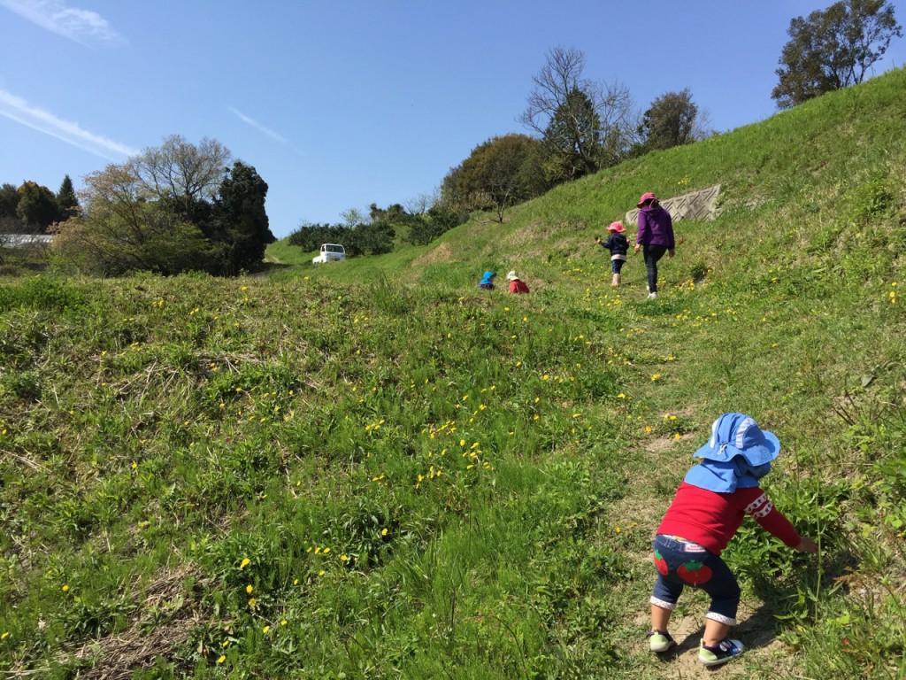 2016年5月│森のお散歩会はなまるのご案内。