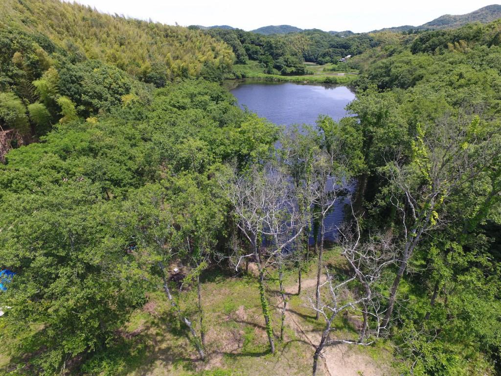 淡路島マンモスの大きな池