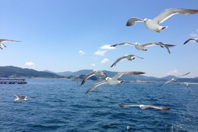 淡路島のクルーズとクルージング船まとめ