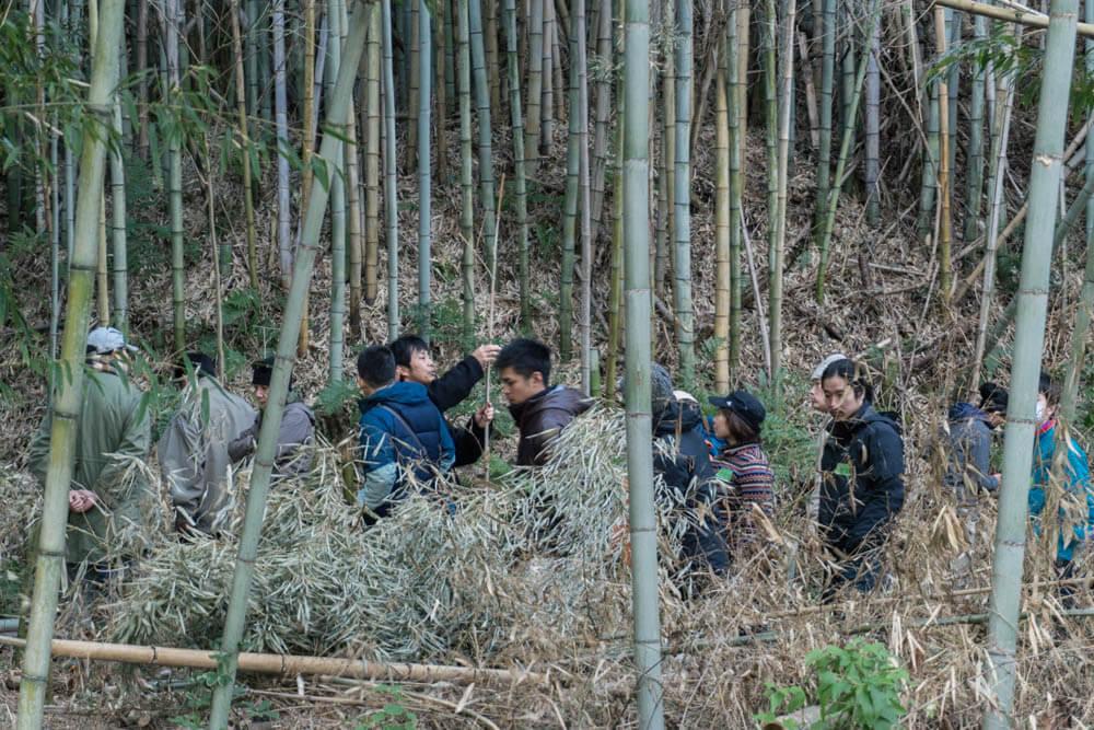ペグにあった竹の選び方を説明