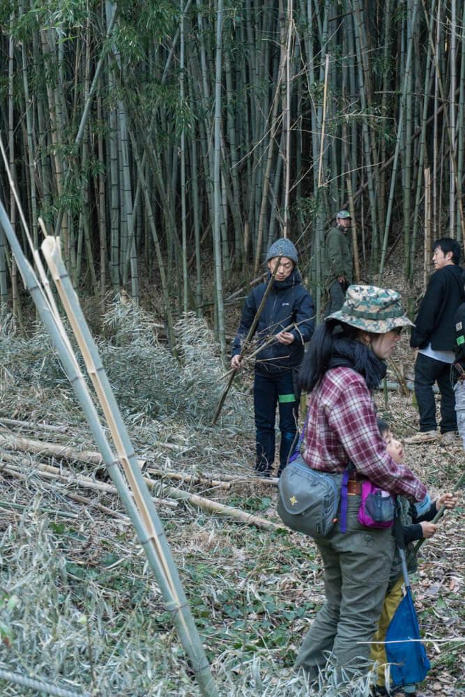 シェルター用の竹を真剣に選定中